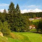 01_golf_horal_n